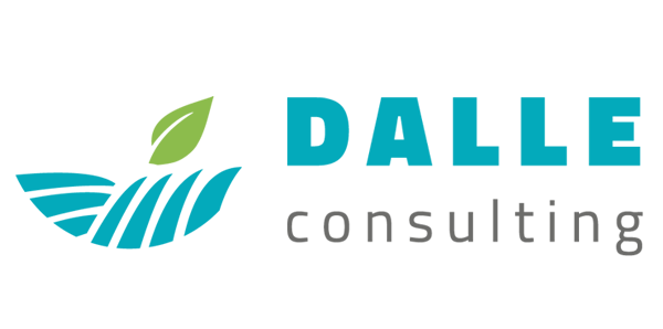 Dalle Consulting