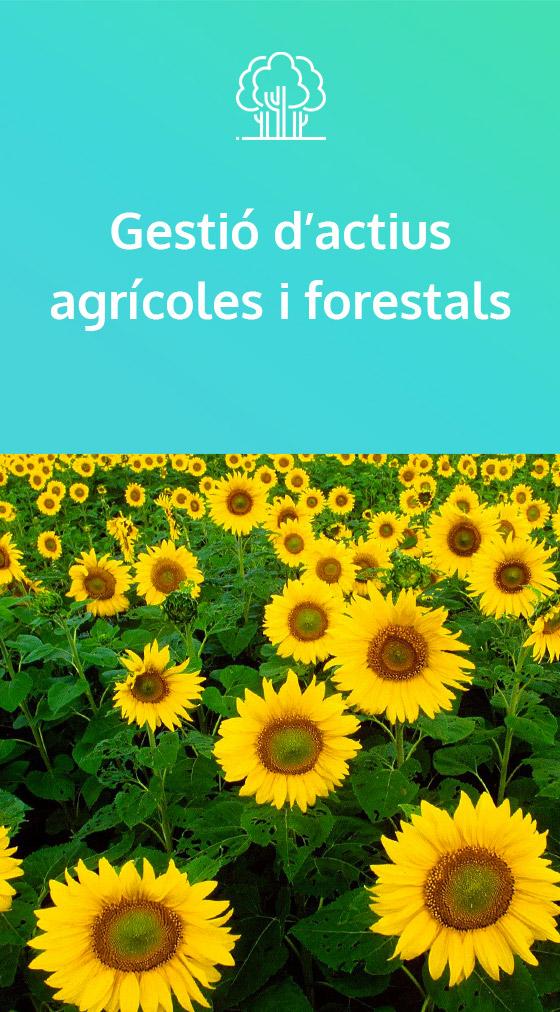 Gestió d'actius agrícoles i forestals